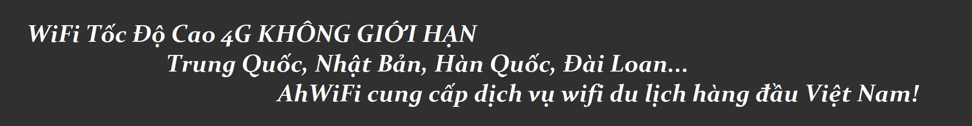 Wifi Quoc Te